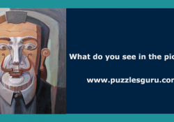 Oleg-Shuplyak-hidden-Optical-Illusion-Riddle