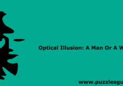 Optical-IllusionA-Man-Or-A-Woman