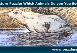 Picture-Puzzle-Which-Animals-Do-you-You-See