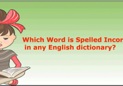 Which-word-is-Spelled-Out-Incorrectly-in-any-English-dictionary