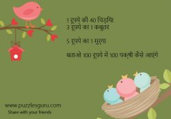 Hindi-Puzzl1-Rs-ki-40-Chidiya