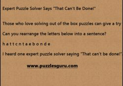 Expert-Puzzle-Solver-Says
