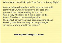 Whom-Would-You-Pick-Up-in-Your-Car-on-a-Stormy-Night
