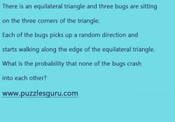 Equilateral-Triangle-Interview-Puzzle