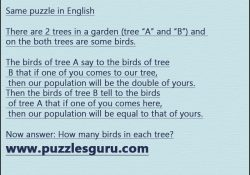 Same-puzzle-in-English