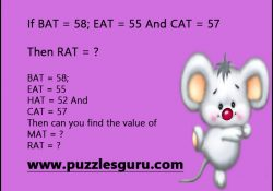 Then-can-you-find-the-value-of-rat