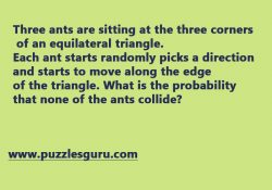What is the probability that none of the ants collide