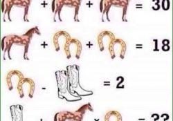 Horse Equation Puzzle And Answer